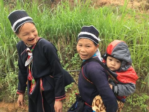 Harvesting Vietnam